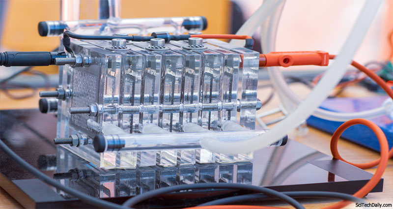The water inside a Car Engine? Construct Your personal HHO Motor and Run Your Car on Water At no cost